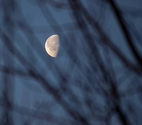 Waning Moon_2990