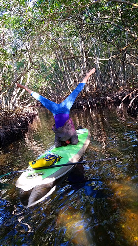 2_10_16 Kayak Paddleboard Tour Sarasota FL 02