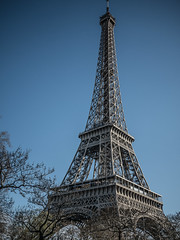 La Tour Eiffel - Eiffel Tower (y.caradec) Tags: trees mars paris france tree tower lumix march europe ledefrance tour eiffeltower eiffel arbres toureiffel 16 eiffelturm arbre iledefrance 2016 gx7 dmcgx7 march2016 mars2016