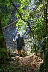 Goomoolahra Falls (NettyA) Tags: sign waterfall track australia trail bushwalking qld queensland bushwalk springbrook goldcoasthinterland 2016 springbrooknationalpark scenicrim seqld warriecircuit bushwalker goomoolahrafalls scbwc sonya7r