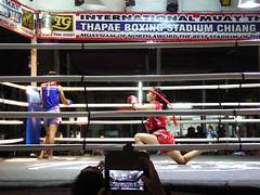 Chiang Mai (Muay Thai Boxing), Thailand (Jan-2016) 10-004 (MistyTree Adventures) Tags: thailand fight women asia seasia indoor chiangmai boxing muaythai thaiboxing boxingmatch boxingring panasoniclumix thapaeboxingstadium