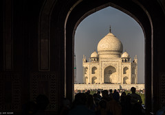 """""""The tear-drop on the cheek of time""""   The Taj Mahal   India (Hadi Zaher) Tags: travel india white tourism up architecture arch ivory taj mahal agra icon mausoleum dome marble shah jahan utter mughal pardesh"""