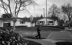 Sunday morning (bingley0522) Tags: sunnyvale suburbia diafine suburbs tmax400 jog sundaymorningwalk leicaelmar50mmf35ltm epsonv500scanner canonivsb2 uncoatednickelelmar1932