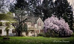 Cottage in the Trust_DSC5772 photoshop NIK edit 2  (nkatesphotography) Tags: landscape outdoors scenic historic nikon1855mm nikond7000 pennypackecologicalrestorationtrust
