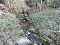 Grsselbach /Schwarzwald (thobern1) Tags: germany schwarzwald blackforest badenwrttemberg enz enzkreis grsselbach grsseltal