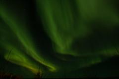 Northern Lights (Huerto) Tags: trees sky canada stars lights rapids stony saskatchewan northern