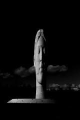 light and dark (juliereynoldsphotography) Tags: white black dream manor sutton julierobinson juliereynolds