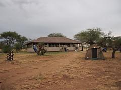 Campsite in the Serengeti (little_duckie) Tags: africa elephant tanzania buffalo jackal lion leopard zebra giraffe baboon serengeti hyena wildebeest warthog hartebeest serengetinationalpark cheeath