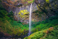 Elowah Awe (West Leigh) Tags: longexposure plants inspiration fern green nature oregon wonder landscape climb waterfall moss northwest live dream hike falls wanderlust explore pacificnorthwest lichen lush naturalbeauty awe inspire grown wander discover elowah canoneos7d