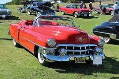 23rd Annual Palos Verdes Concours d'Elegance (USautos98) Tags: convertible cadillac eldorado caddy 1953 caddie