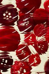 Untitled 14 (Takako Kitamura) Tags: red abstract crispy