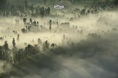 Tenggerese Village (jackritsinghanutta) Tags: mist fog sunrise indonesia village bromo tengger