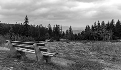 IMG_20160409_145402_DSC_2751-3 (TheGufotography) Tags: blackandwhite bw lake nature forest germany bench view mummelsee outddor northernblackforest