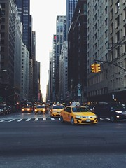 #NewYork #citygirl #citylove #taxis #middleofstreet #crazy #fun artists go the extra mile to get good photos. Well, I got in the middle of the road.  (kelsey_erinbook13) Tags: newyork fun crazy taxis citygirl citylove middleofstreet