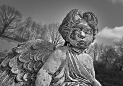 Bruised (drei88) Tags: life cemetery angel death sad mourning gritty reality forlorn