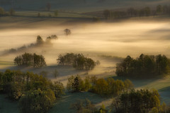 In the Morning Mists (Bonnie And Clyde Creative Images) Tags: morning trees mist mountains beautiful canon landscapes canonl70200 canon7d