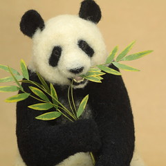 (K A J I) Tags: panda needlefelting