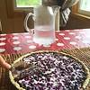 Mustikkapiirakkaa. Nam. #blueberry #pie #wifemade #tasty... (Matti Airaksinen) Tags: food pie tasty blueberry v snack mustikkapiirakka wifemade uploaded:by=flickstagram instagram:photo=1039823883947534212302847616 vaimoteki