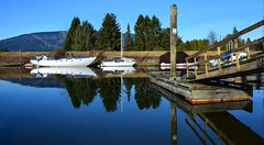 Boats on Alouette River ( Peterson Photogr@phy  Happy 2016!!) Tags: dykes canada landscape boats nikon britishcolumbia wetlands marsh boathouse pittmeadows boatsheds alouetteriver pittpoulder pittriverdykes nikond5200 southarmalouetteriver nikonafs18140mmf3556edvr