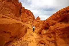 hiking in Timna park - Negev-Desert - Israel (Lior. L) Tags: park israel desert hiking negev timna negevdesert timnapark hikingintimnaparknegevdesertisrael