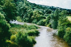 where the rivers flow (ivvy million) Tags: summer green nature river germany deutschland 50mm countryside europa europe sommer fluss rlp rheinlandpfalz nahe rhinelandpalatinate nahetal naheland staudernheim nikond90 ivvymillion