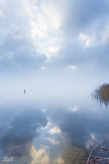 Zen Morning Vertical (Luziferian) Tags: morning mist reflection water vertical misty fog clouds landscape haze mood nebel foggy zen hazy reflexion spiegelung schleswigholstein tranquillity westensee