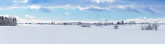 Fields and farms near Linwood (virgil martin) Tags: winter panorama snow ontario canada landscape gimp wellesleytownship waterlooregion mennonitefarm microsoftice oloneo olympusomdem5