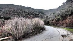P1270115 (Marcel Ballesteros) Tags: california bay hiking places biking area guide northern advisor californiatour californiatravel outdoorworkout toptravelguide marcballesteros marcelballesteros besttravelguide touringbayareacalifornia wheretogoinbayareacalifornia greattravelguide bayareacaliforniatourism bayareacaliforniathingstodo wheretogoinnortherncalifornia touringnortherncalifornia bayareacaliforniaattractions hikingbayareacalifornia tourbayareacalifornia bayareacaliforniahiker mustseeplacesinbayareacalifornia northerncaliforniatourism traveldestinationbayareacalifornia sightseeinginnortherncalifornia sightseeingcalifornia californiatraveladvisor hikerbay trailshistorical northerncaliforniaattractions