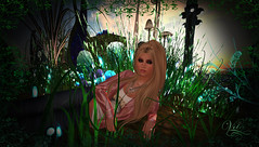 Returning to the my own Wonderland  (Vita Camino) Tags: art digital camino mesh blueberry secondlife exile sim vita destinations