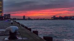 Zonsondergang bij de Maas (dorsman1970) Tags: winter water zonsondergang rotterdam nederland wolken maas rood zon stad oranje landschap straatbeeld tegenlicht wilhelminakade rivier