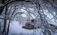Frozen beauty (Mika Laitinen) Tags: winter white snow tree ice nature water suomi finland river landscape frozen waterfall helsinki vanhankaupunginlahti frost outdoor winterscape uusimaa ef24105mmf4l canon7d