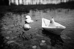 Un nuovo viaggio (merlo.betty) Tags: canon barca di carta giochi barchetta conchiglie