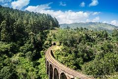 Srilanka - nine arch bridge, ella (deeptipahwa) Tags: asia tea ella srilanka ceylon hillcountry kandy southasia teaestate nuwaraeliya teaplucker teapalntation