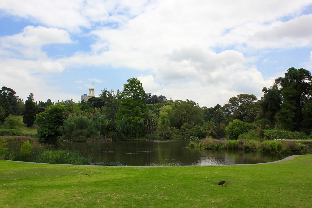 The world 39 s best photos of pond and royalbotanicgardens for Garden pond melbourne