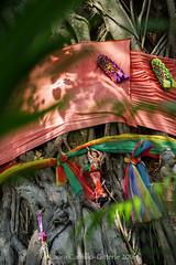 20160307-DSC01927.jpg (flia gitterle) Tags: ceramics ceci beatriz photogroup photowalks kohkret tiamaru typicalthailand