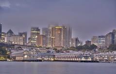 Sydney CBD (quarterdeck888) Tags: city nightphotography water nikon sydney frosty citylights quarterdeck d7100 jerilderietruckphotos jerilderietrucks