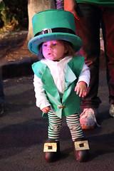 Pequeas Tradiciones (Jos Ramn de Lothlrien) Tags: irish green fiesta cerveza stpatrick shamrock irlanda sanpatricio verda treboles irlandaenmxico mxicoirish mxicoingreen mxicoenverde tradicinirlandesa