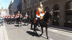 queen,s lifeguards-household cavalry mounted regiment-freedom of the city of london parade /20/04/2016/ (philipbisset275) Tags: unitedkingdom cityoflondon centrallondon queenslifeguards englandgreatbritain householdcavalrymountedregiment 20042016 freedomofthecityoflondonparade