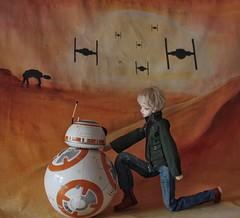 Star Wars (Champignons) Tags: toy photography doll dolls bjd dim laia balljoint dollzone dollinmind