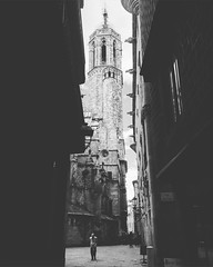 But the evidence surrounds us (Sator Arepo) Tags: barcelona tower architecture spain cathedral gargoyles iphone6