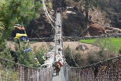 Mules crossing (D A Scott) Tags: bridge nepal camp mountains trek asia lakes bazaar everest base himalayas gokyo namche