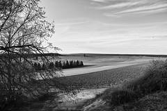 Urlaub!!! (Dirk Stenzel) Tags: sky bw white black landscape sigma sw landschaft schwarzwald blackforest schwarz merrill foveon weis dp1 lffingen dittishausen