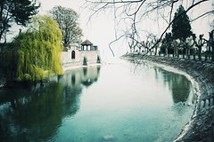 Konstanz (freyavev) Tags: blue lake green reflections river germany deutschland canal turquoise willow bodensee konstanz badenwürttemberg lakeconstance vsco