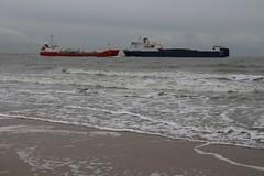 Zoutelande - Strandleben (stephan200659) Tags: holland strand noordzee zeeland beachlife northsea schelde nordsee niederlande veere walcheren zoutelande strandleben westerschelde nederlande nethherlands