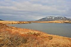 Sog (skolavellir12) Tags: mountain fish water canon river landscape island rebel iceland spring fishing salmon land pure sog grímsnes charr