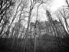 AmAZeD (tazparren@sbcglobal.net) Tags: bw castle germany neuschwanstein