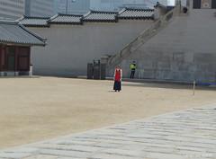 I lost my tourists,... again,... again (misterblue66) Tags: lost korea tourist again seoul guide perdu encore core guid touriste soul deoksugung
