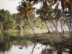 Kollam - India (Ibontxo) Tags: travel india nature olympus kerala traveling zuiko backwaters 40150 em5