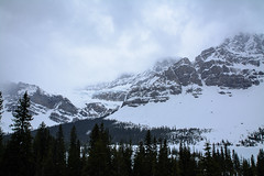 Crowfoot Glacier and Crowfoot Mountain (tylerhuestis) Tags: trees snow canada mountains nature landscape spring alberta banff banffnationalpark tamron1750 d7100