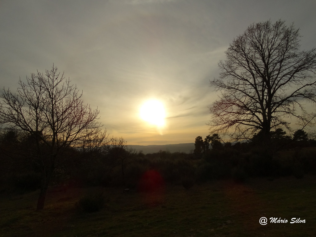 Águas Frias (Chaves) - ... pôr do sol entre árvores ...